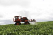 Indispensáveis para a agricultura sustentável: a importância do uso correto de defensivos agrícolas.