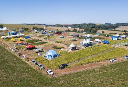 Dia de Campo da Coopertradição traz culturas de Soja e Milho e também momento para pecuaristas.