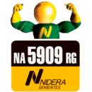 NA 5909 RG