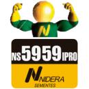NS 5959 IPRO