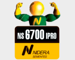 NS 6700 IPRO