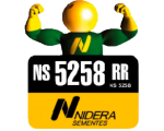 NS 5258 RR