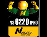 NS 6220 IPRO